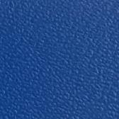 kolorystyka leża